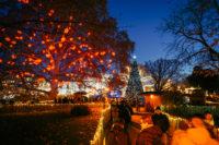 Der Herzerlbaum des Wiener Weihnachtstraums