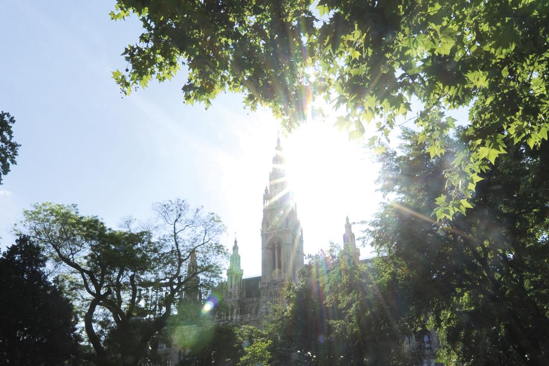 Sicht auf das Rathaus bei Sonne